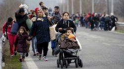 Kúp si svojho migranta