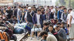 Pozícia SaS pri riešení migračnej krízy