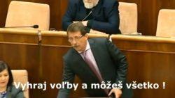 Pavol Paška | Snáď si nikto nemyslí, že tieto dve figúrky ukradli milión