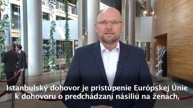 Istanbulský dohovor - Richard Sulík, Europarlament